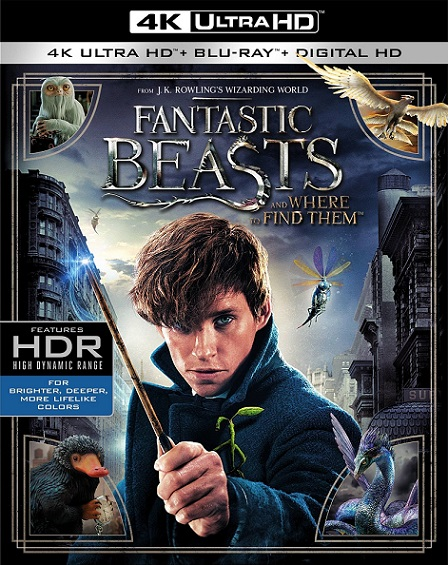 Fantastic Beasts and Where to Find Them 4K (Animales Fantásticos y Dónde Encontrarlos 4K) (2016) 2160p 4K UltraHD HDR BluRay REMUX 54GB mkv Dual Audio Dolby TrueHD ATMOS 7.1 ch