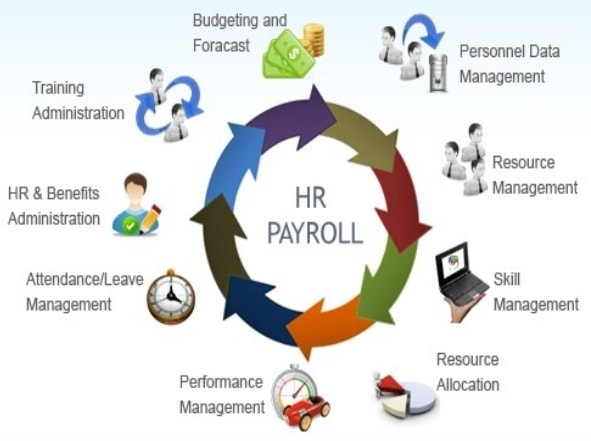 Benefits of HRD and Payroll system development in textile industry
