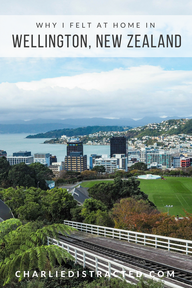 Why I would live in Wellington, New Zealand