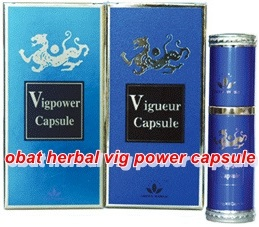 obat herbal vig power capsule