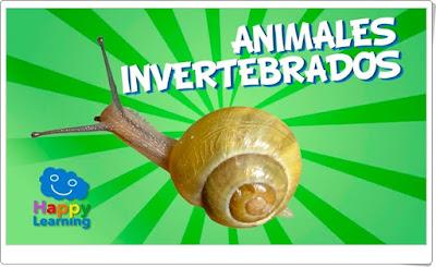 Animales invertebrados Vídeo de Happy Learning Ciencias Naturales de Primaria