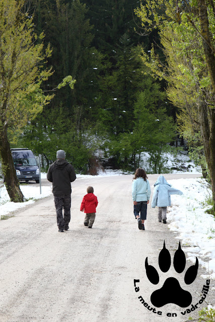meute-piste-lac-cerknica-slovenie