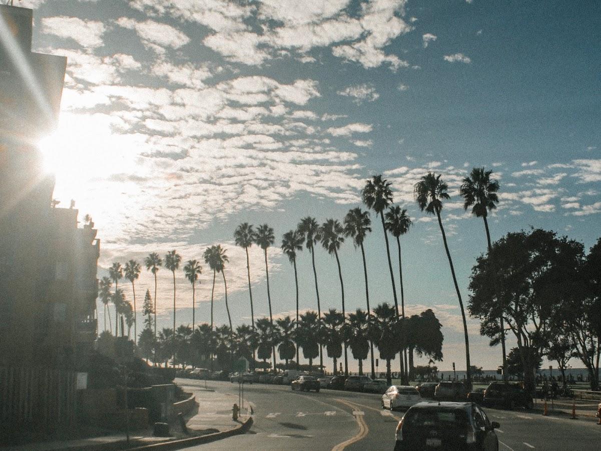 california sunset beach street palms vintage grainy photography