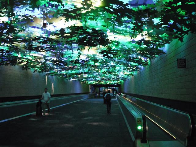 Atlanta airport A B concourses art forest