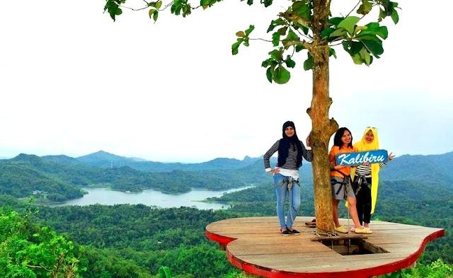 Love Spot Kalibiru Kulon Progo Daerah Istimewa Yogyakarta Indonesia