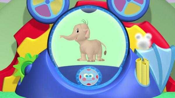 A baby elephant