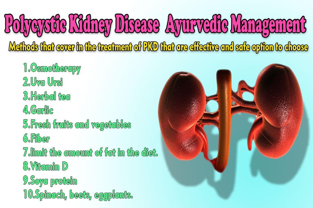 Polycystic Kidney Disease Ayurvedic Treatment A Life Savior Ayurvedic Kidney Failure Treatment