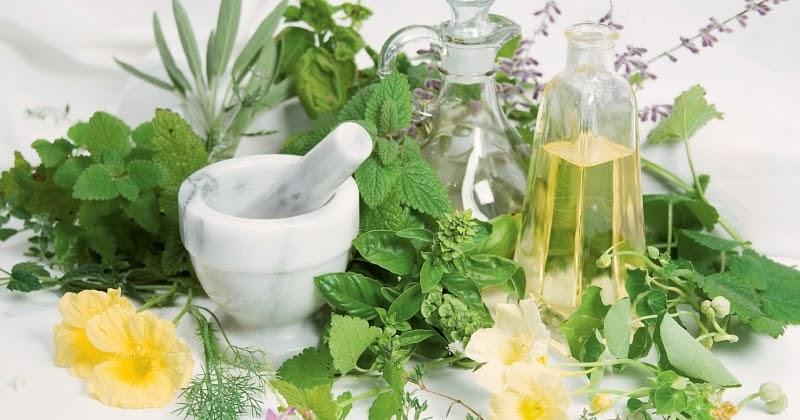Kaukázusi gyógynövények pikkelysömörről vélemények)