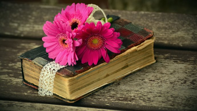 Wallpaper 2: Old Book and Gerbera Flowers