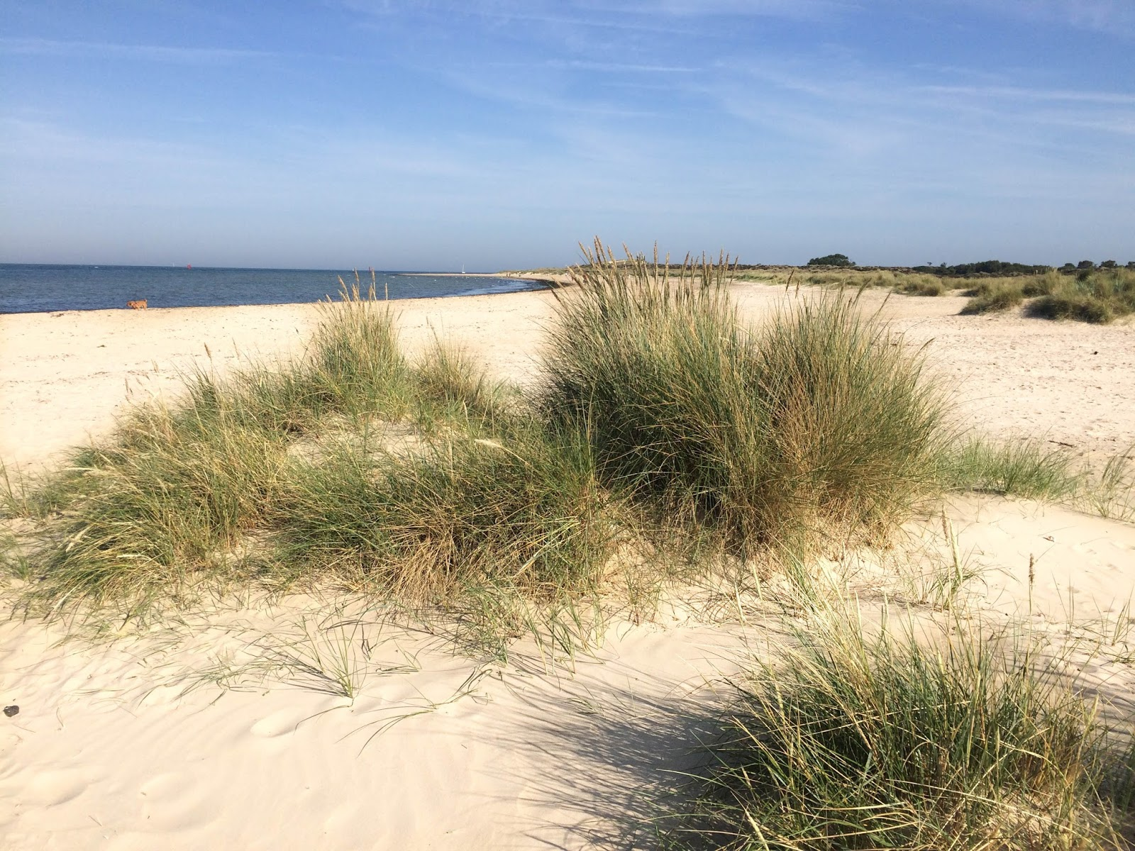 Things to do in Studland Dorset, UK travel blog, lifestyle bloggers, Studland beach