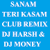 SANAM TERI KASAM - CLUB REMIX DJ HARSH & DJ MONEY