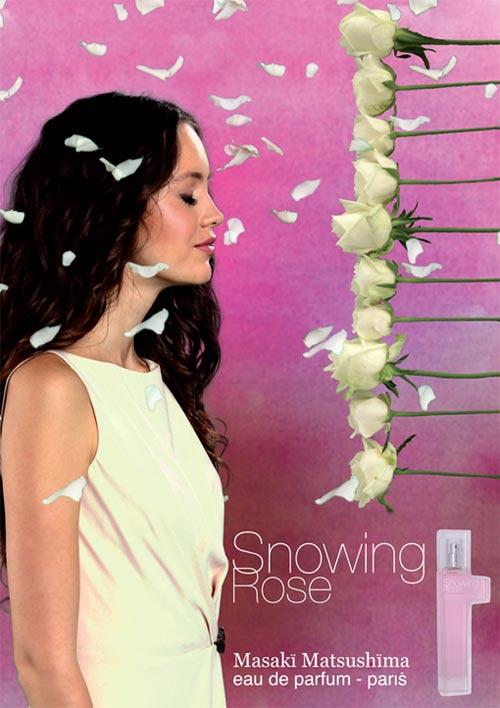 Masaki Matsushima  Snowing Rose отзыв