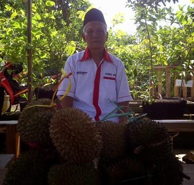 Mbah Serad dan durian merah istimewanya.