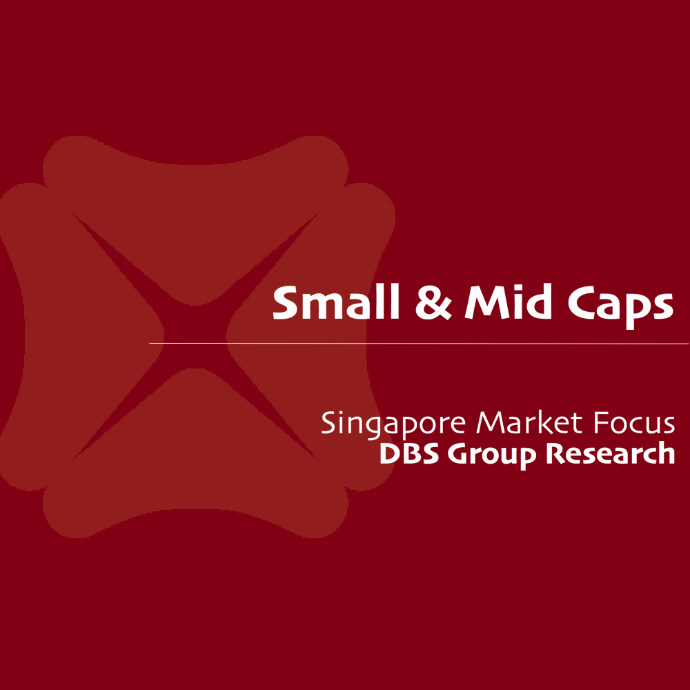 Small Mid Cap Monthly - DBS Vickers 2016-12-13: Diamonds in the Rough