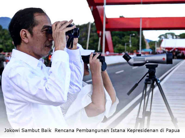 Jokowi Sambut Baik Rencana Pembangunan Istana Kepresidenan di Papua