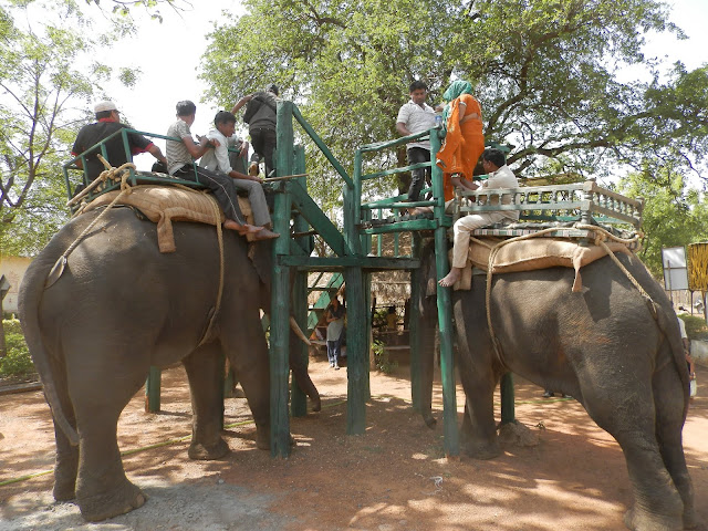 Tadoba Andhari Tiger Reserve Elephant safari
