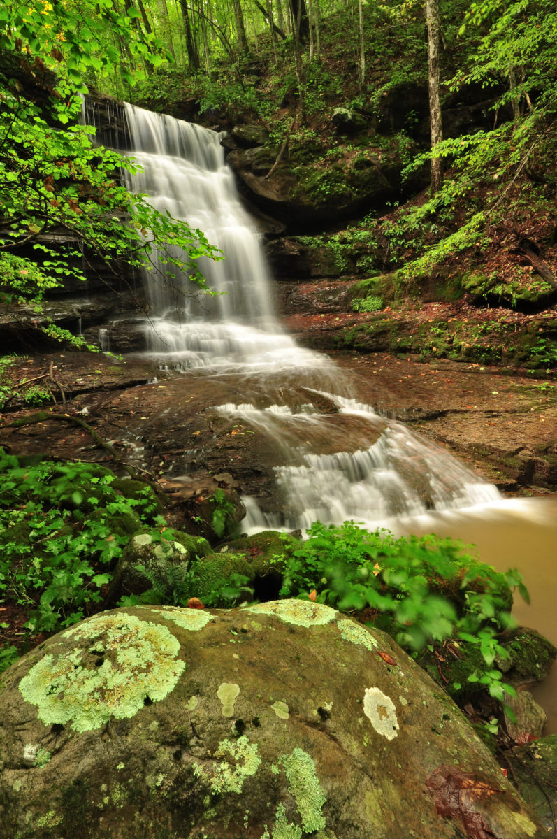 Station Cove Falls Is A Short Waterfall Hike In South Carolina |Small Cove Waterfall