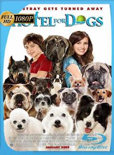 Hotel para perros (2009) HD [1080p] Latino [GoogleDrive] SilvestreHD