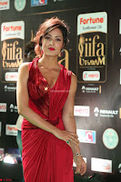 Videesha in Spicy Floor Length Red Sleeveless Gown at IIFA Utsavam Awards 2017  Day 2  Exclusive 36.JPG