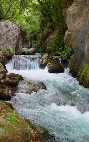 River Lousios. Arcadia Greece
