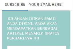 Membuat Widget Email Subscribe Dengan Style Flat