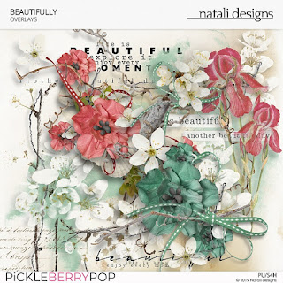 https://pickleberrypop.com/shop/Beautifully-Overlays.html