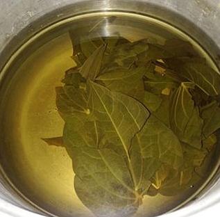 air rebusan daun sirih