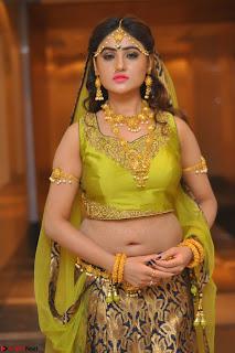 Sony Charishta in Green Choli Ghagra Transparent Chunni Ethnic Wear March 2017 062.JPG