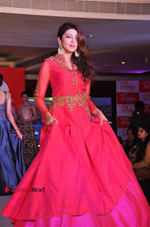 South Indian Celebrities Pos at Love For Handloom Collection Fashion Show  0066.jpg