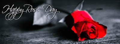 Cute Happy Red Rose Day 2017 Cover Facebook Images