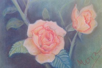 Menggambar bunga mawar mengunakan pastel