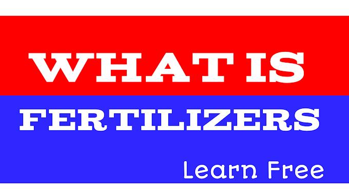 What is Fertilizers:-Advantages and disadvantages
