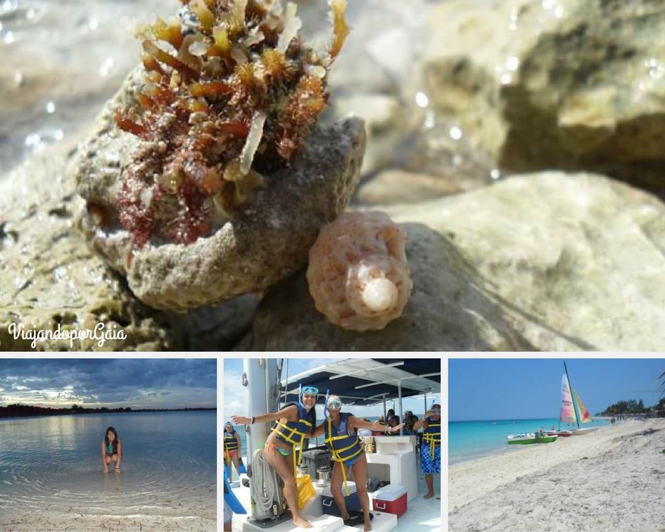 Todas las fotos corresponden a Playa Larga, en Cayo Coco, excepto las de snorkel, la cual fue tomada en las cercanías de Playa Pilar, considerada una de las mejores playas de Cuba, ubicada en Cayo Guillermo