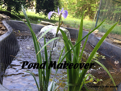 DIY fish pond with flowers