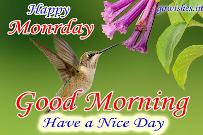 24-12-2018 Good Morning wishes image Today
