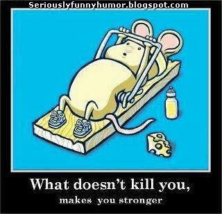 What doesn't kill you, makes you stronger! Funny meme mouse exercising!