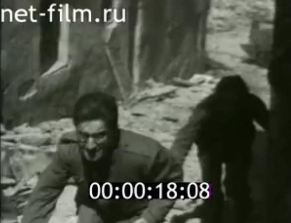 toledo guerra civil koltsov