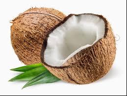 abbinare la produzione di fibra di cocco Kuching incontri
