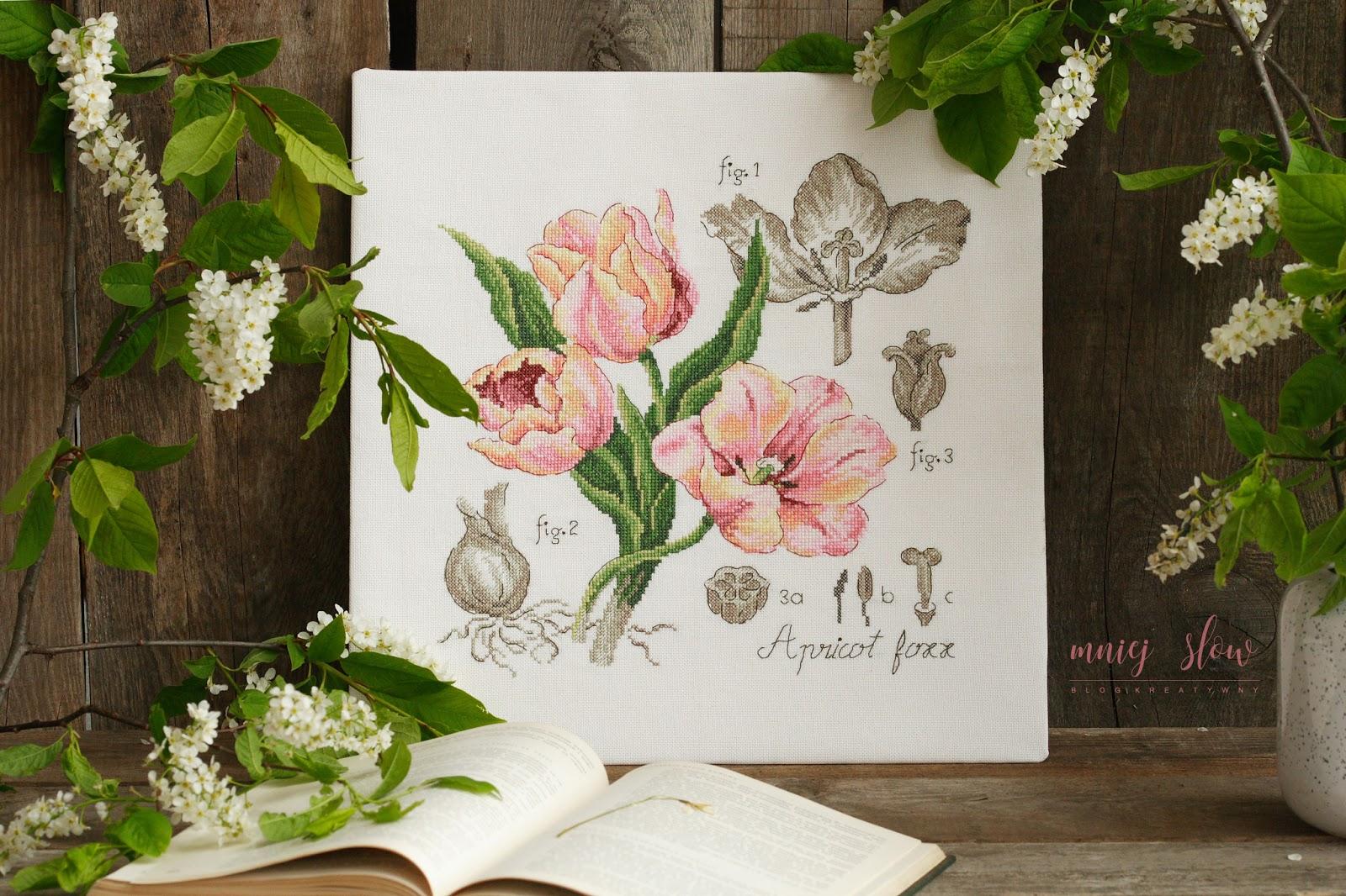 Étude à la Tulipe - Véronique Enginger