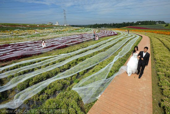 gaun pengantin terpanjang di dunia