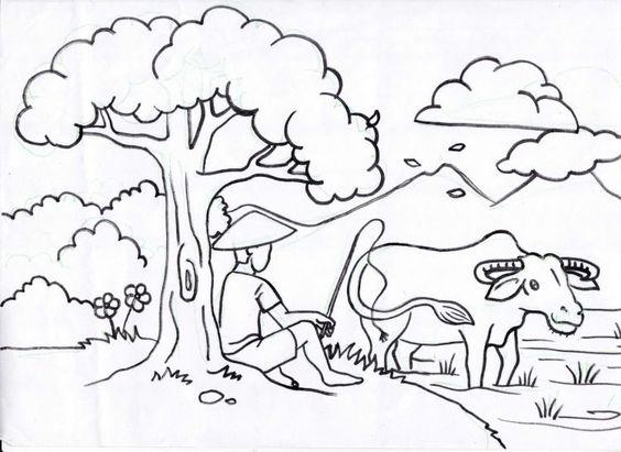 Tranh tô màu phong cảnh chăn trâu