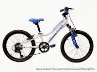 Sepeda Gunung Reebok Chameleon Spirit Rangka Carbon Steel 6 Speed 20 Inci
