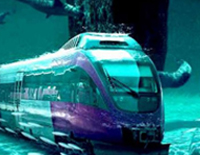 China's First High Speed Train in Undersea Tunnel