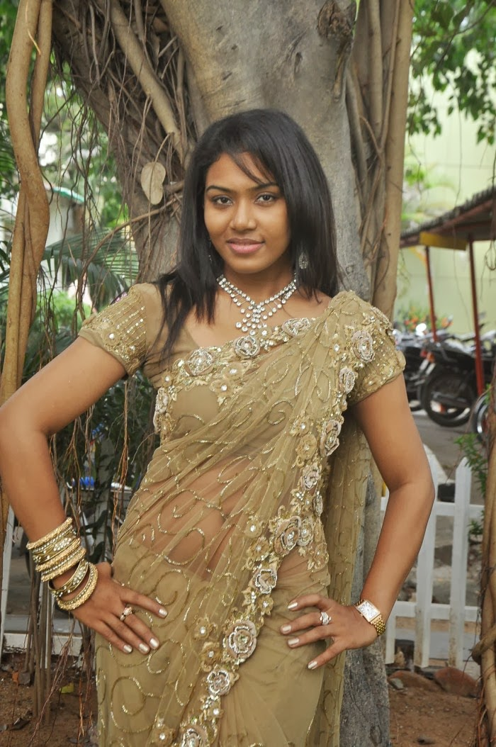 Kerala Mallu Sexy Aunty Pavitra Hot Transparent Saree -2327