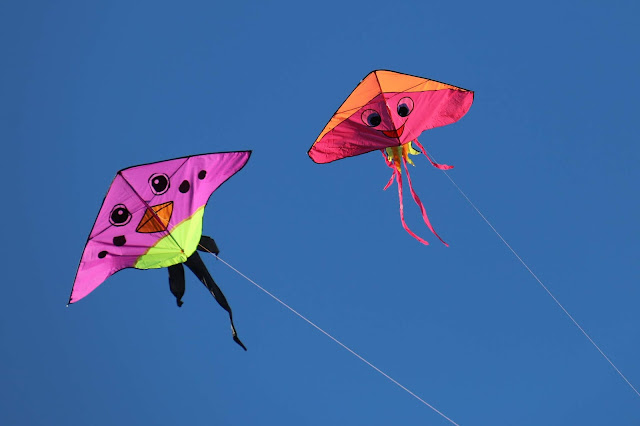 Two brightly coloured kites being flown