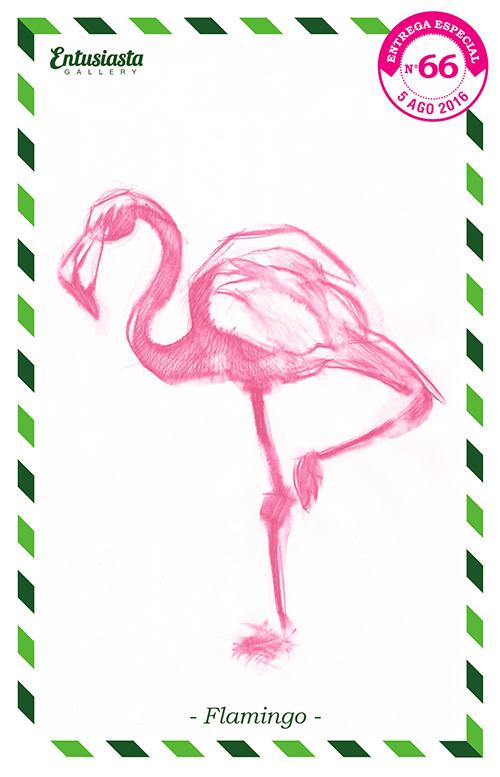 A pink flamingo traditionally illustrated by ilustrator David Pugliese. Un flamenco por el dibujante David Pugliese.
