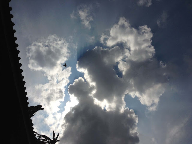 空,雲,鳥,行天宮,台北,台湾〈著作権フリー無料画像〉Free Stock Photos