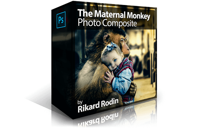 The Maternal Monkey Photo Composite
