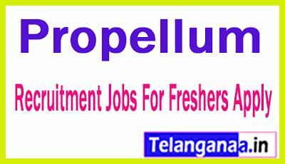 Propellum Recruitment Jobs For Freshers Apply
