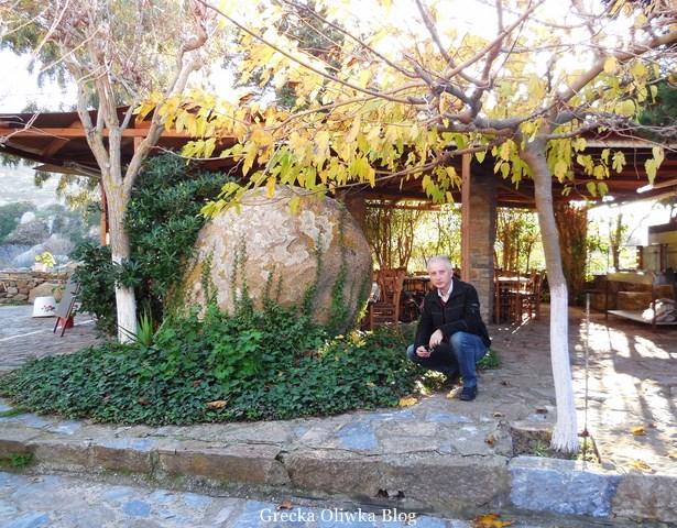 Ogromy głaz w tawernie pod jesiennym platanem